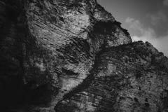 Berglandskapbw fotografering för bildbyråer