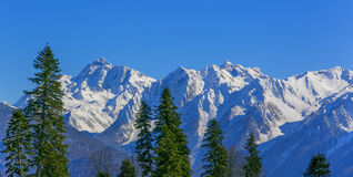 Berglandskapet av Sochi Krasnaya Polyana, Arkivbild