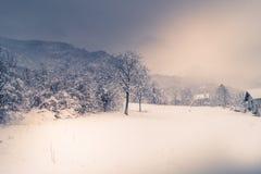 Berglandskapet med snö, snö täckte träd Royaltyfri Foto