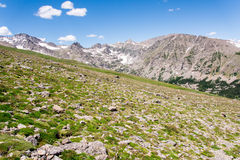 Berglandskaplandskap med blå himmel ovanför timberline Arkivfoto