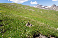 Berglandskaplandskap med blå himmel ovanför timberline Royaltyfria Bilder