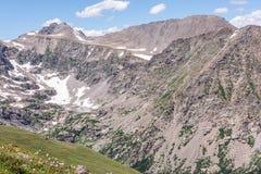 Berglandskaplandskap med blå himmel ovanför timberline Arkivbilder