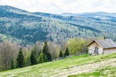 Berglantgård i Carpathians, Ukraina royaltyfria bilder