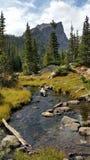 Bergliten vik i Rocky Mountain National Park royaltyfri foto
