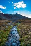 Bergliten vik nära gör klar sjön Colorado fotografering för bildbyråer