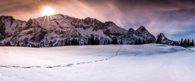 Bergmaxima med fotsteg på snö royaltyfria foton