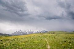 Bergmaxima med snö och gräsplan betar under mörk molnig himmel i på Bashi, Kirgizistan Royaltyfria Foton