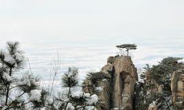 Bergmaximum Royaltyfria Foton