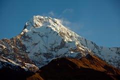 Bergmaximum Annapurna som är södra på soluppgång i Himalayas Nepal Arkivfoton