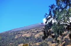 Bergmaximum av Rinjani Arkivbilder