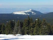 Bergmaximum i Kopaonik Royaltyfria Foton