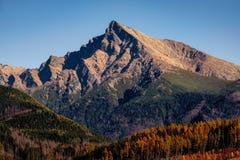 Bergmaximum Krivan i höga Tatras, med härlig höstfärg, Slovakien arkivbilder