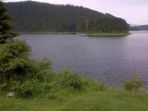 Bergmeer en bos stock foto