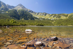Bergmeer in het hoge landschap van de tatraszomer Stock Afbeeldingen