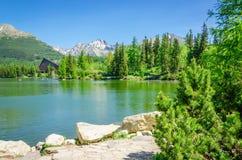 Bergmeer op achtergrond van groene bomen en hemel Royalty-vrije Stock Fotografie