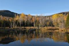 Bergmeer in recente de herfstkleuren Stock Foto's
