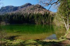 Bergmeer in Slovenië Royalty-vrije Stock Afbeelding