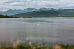 Bergmening en fjord in Molde, Noorwegen Stock Foto's
