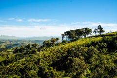 Bergmening van landbouwbedrijf in Cunha, Sao Paulo Bergketen in t Stock Afbeeldingen