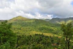 Bergmoment och frodigt grönt landskap Arkivfoton
