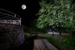 Bergnattlandskap av byggnad på skogen i dimmig natt med månen Grön äng, stora träd och övergett hus på natten Nig Royaltyfria Bilder