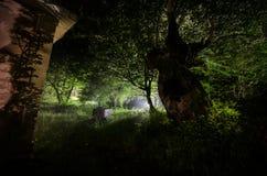 Bergnattlandskap av byggnad på skogen i dimmig natt med månen Grön äng, stora träd och övergett hus på natten Nig Royaltyfri Fotografi
