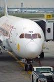 Bergnyalaen Boeing 787 Dreamliner från Ethiopian Airlines (OCH) Royaltyfri Bild
