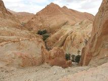 Bergoas av Chebika med palmtr?d i den sandiga Sahara ?knen, bl? himmel, Tunisien, Afrika fotografering för bildbyråer