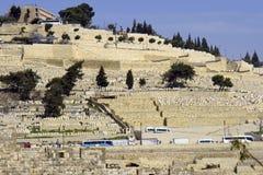 Bergoliven bringen alte Stadt Jerusalem Israel an Lizenzfreie Stockfotos