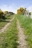 Bergopwaarts spoor in platteland Royalty-vrije Stock Afbeeldingen