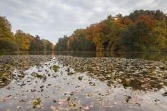 Bergpark wilhelmshoehe kassel germany in the autumn Stock Image