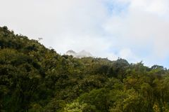 Bergpiek achter wild bos van een berg Stock Afbeelding