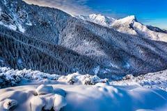 Bergpiek bij dageraad in de winter Stock Afbeelding