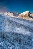 Bergpieken in de de winterzonsopgang Royalty-vrije Stock Afbeeldingen