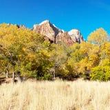 Bergpieken en Dalingskleuren in Zion National Park Utah Stock Afbeeldingen