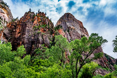 Bergpieken in Zion National Park, Utah stock fotografie