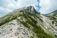 BergPirin landskap Royaltyfria Bilder