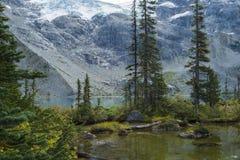 Bergplats på den tredje övresjön på Joffre Lake Hike nära Pemberton Arkivfoton