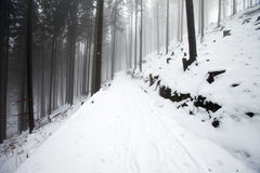 bergpolermedelvinter Royaltyfri Fotografi