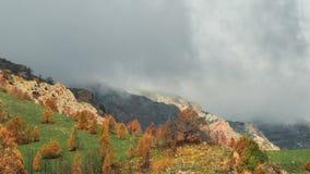 Bergrand met bewolkte die hemel, met gras en bomen met oranje bladeren in timelapse 4K wordt behandeld stock footage