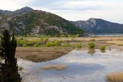 Bergreflexion i sjön Skadar i Montenegro Royaltyfria Bilder