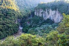 Bergregenwoud in canion dichtbij Pailon del Diablo, Banos ecuador Stock Afbeelding