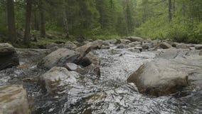 Bergrivier in de herfsttijd Rotsachtige Kust Rivier die door Rocky Mountains vloeien stock video