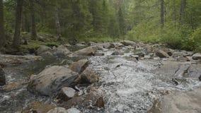 Bergrivier in de herfsttijd Rotsachtige Kust Rivier die door Rocky Mountains vloeien stock afbeelding