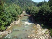 Bergrivier in de Karpaten Stock Foto