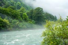 Bergrivier en bos in de mist over de rivier stock fotografie