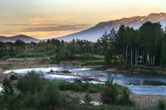 Bergrivier en bosbomen op de zonsondergang, Altai-Bergen, Kazachstan Royalty-vrije Stock Foto's