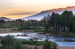 Bergrivier en bosbomen op de zonsondergang, Altai-Bergen, Kazachstan Royalty-vrije Stock Afbeeldingen