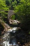 Bergrivier en oude brug Stock Afbeeldingen