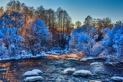 Bergrivier en sneeuw behandelde bomen Royalty-vrije Stock Afbeeldingen